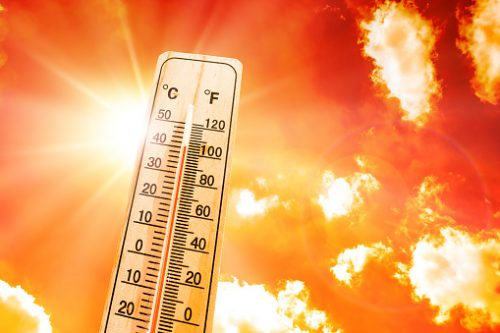 How To Prepare For Extreme Heat: A Guide + Checklist